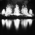 christmas_green_lake_01