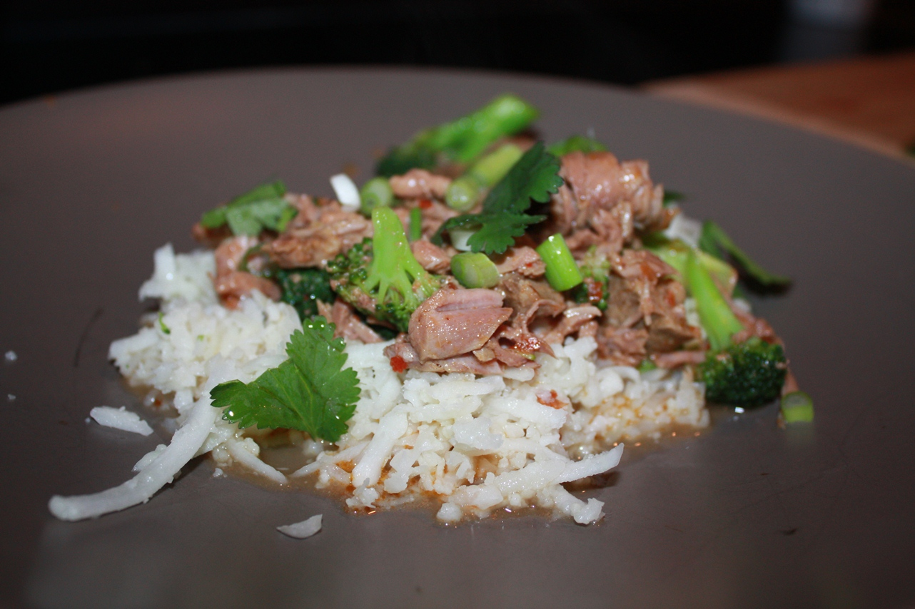 2013_slow cooker red curry beef_08