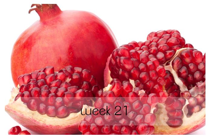 week 21 blog
